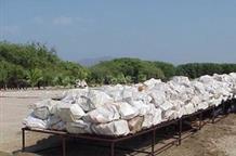 480 кг кокаина нашли греческие полицейские в бананах