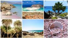 Красота на века: пять самых ярких побережий Крита (фото)
