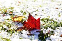 Первый снег в Греции: ждите на этой неделе