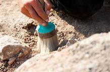 В Греции обнаружена полная сокровищ могила древнего воина