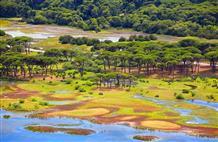В Греции есть всё, и даже собственная... Амазонка (фото)