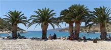 Экзотика на острове Греции: пляж под пальмами (фото)