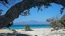 Жемчужина юга: греческий островок с самым большим кедровым лесом в Европе (фото)
