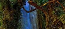 Как двое парней «открыли» миру сказочные водопады (фото)