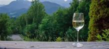 В Греции вошли в моду винные туры (фото)
