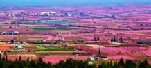 Весна рисует магические картины в Греции (фото)