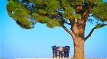 Где еще? Отпуск только в Греции