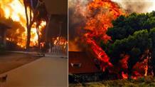Пожары в Греции: число жертв растет, началась поисковая операция в море