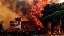 Евросоюз объявил траур по жертвам лесных пожаров в Греции