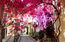 Осень в Грецию спешит к выходным