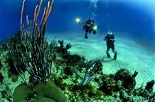 В Греции туристам разрешат нырять к затонувшим кораблям