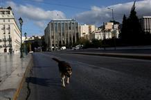Карантинный год: какие события жизни Греции запомнились нам