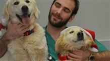 Поющий ветеринар (видео)
