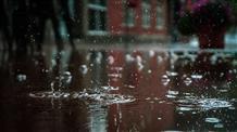 Дождь и грозы в выходные