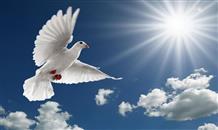 Когда в Греции отмечают День Святого Духа?