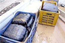 400 килограммов гашиша выловили из моря